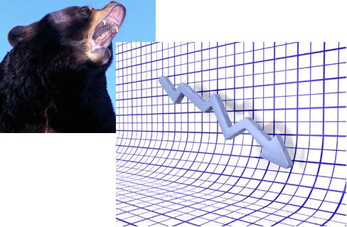 Bear Pushing Shares Down
